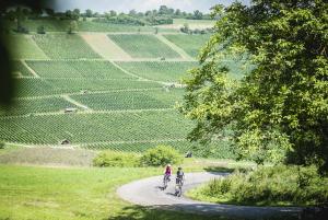 1 La Route Verte - 1. Etappe
