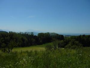Aussichtspunkt Schweikhof - © Wildnispark Zürich