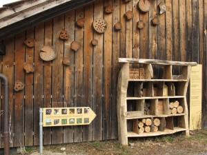 Kleintier-WG - © Wildnispark Zürich