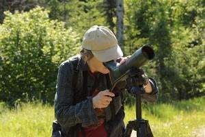 Privatexkursion: Vögel erleben und verstehen