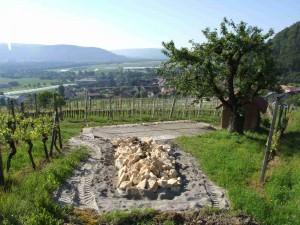 Weingenuss vom Rebberg ins Besserstein Stammlokal - © Besserstein Wein AG