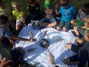 Roggen: Vom Getreide zum Brot (Zyklus 2)