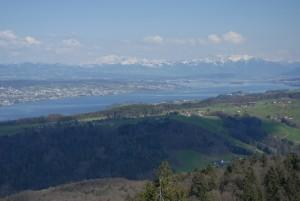 Site panoramique Albishorn - © Wildnispark Zürich