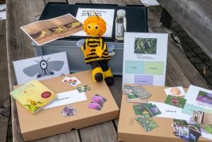 Lektionsreihe & Materialkoffer Bienen (Zyklus 1) - © 2019 Matthias Luggen