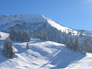 Skigebiet Springenboden