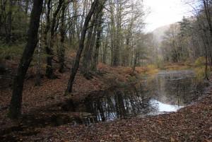 Le petit lac dans le Parc Maia - © Roberto Buffi