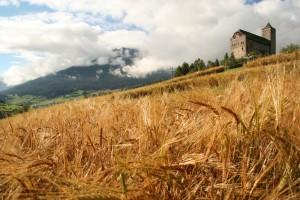 Castello di Riom - © Savognin Tourismus im Surses
