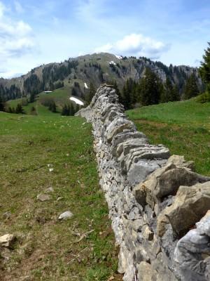 360° Weitblick - © Parc Jura vaudois