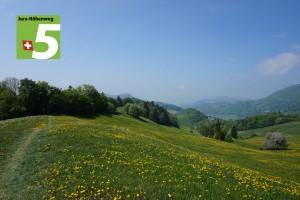 Jura-Höhenweg (Etappe 4) - © Naturpark Thal