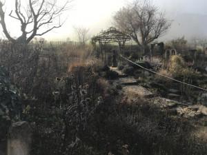 Naturgarten, Lichterwanderung und Gaumengold