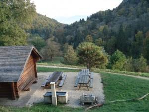 Arboretum Bois Guyot, Bière - © Parc Jura vaudois