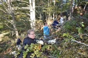 Gruppeneinsatz WEGE - © Parc régional Chasseral