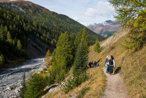 Guided walks in the Swiss National Park - © ©Schweizerischer Nationalpark/Hans Lozza