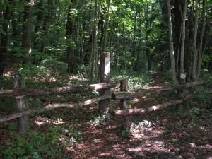 Bois Chênes Naturschutzgebiet - © Parc Jura vaudois