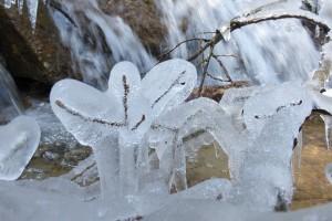 Winterwandern Andeer - © Naturpark Beverin
