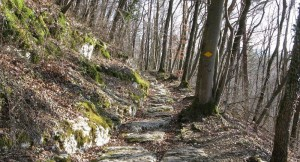 Auf alten Pfaden über den Bözberg
