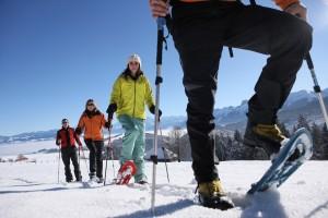 Winterwanderung Riffenmatt LZG - © Naturpark Gantrisch