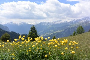 Walserweg Graubünden Etappe 7 - © Naturpark Beverin