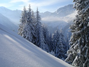 Grimmialp snow-shoe trail