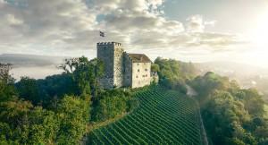 Schloss Habsburg - © Michel Jaussi