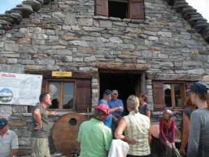Alpen und Käse beidseits des Albrun