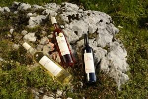 Vins Auberson & Fils - ©