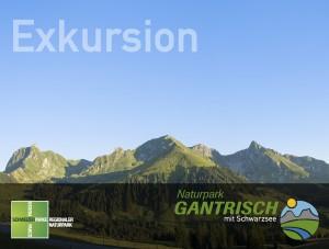 Spuren im Schnee - © artmax GmbH, Schwarzenburg, Switzerland