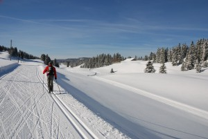 Cross-country ski route