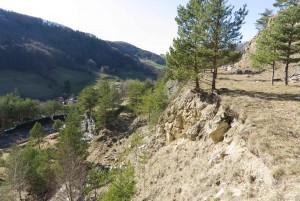 Einblick ins Schutzgebiet Kienberg von Pro Natura