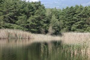 Ich als Teil der Natur (1H - 2H) - © Naturpark Pfyn-Finges