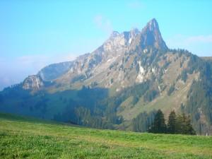 Brecca primeval landscape