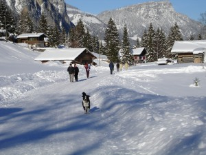 Grimmialp winter hiking trail