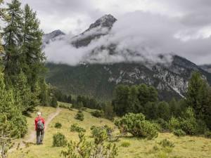Escursione guidata Grimmels - © ©Schweizerischer Nationalpark/Hans Lozza