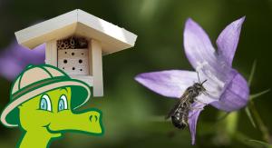 AUSGEBUCHT: Perimuk-Abenteuer: Wildbienen - © naturimgarten