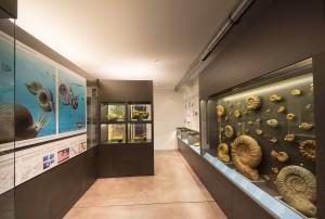 Bergwerksmuseum Herznach - © Pino Stranieri