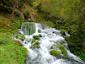 Quelle der Lionne - © Parc Jura vaudois