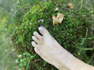 Themenrunde: Füsse, unsere Wurzeln zur Natur