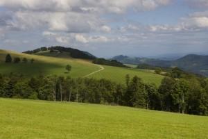 Brunnersbergkette (1118m ü.M.) - © Naturpark Thal