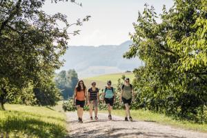 Wanderung auf dem Fricktaler Höhenweg - © ©Switzerland Tourism/Ivo Scholz