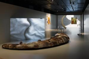 Steinbock im Visier der Kunst