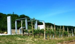 Römische Weinkultur