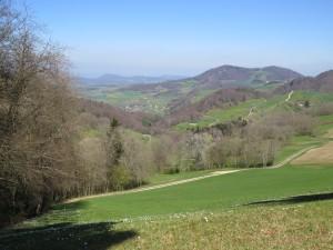 Oberhöfler Wanderwege