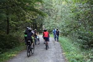Rundtour Langenberg–Sihlwald - © Wildnispark Zürich