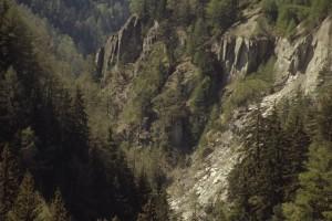 Naturwaldreservat Twingi