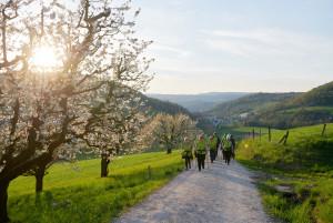 Walking und genial regionaler Genuss - © Erika Essig