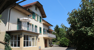 Hobelhof Oberflachs