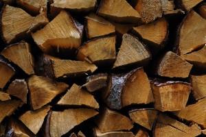 Exkursionen GOMS Holzenergie