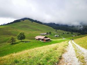 Alp Tschuggen alpine farm