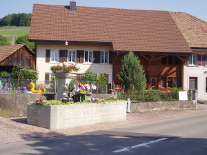 Villigen: Schebi Baumann Weinbau