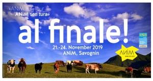 ANiM sen tura - al finale: Fest, Ausstellung, Rahmenprogramm